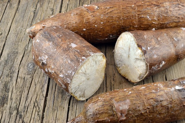 Cassava is made from the yucca root.