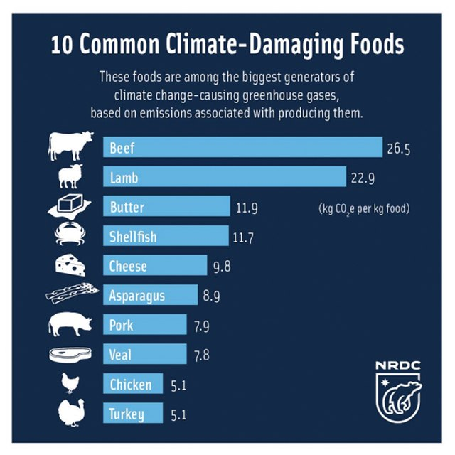 A list of the top 10 most climate-damaging foods.