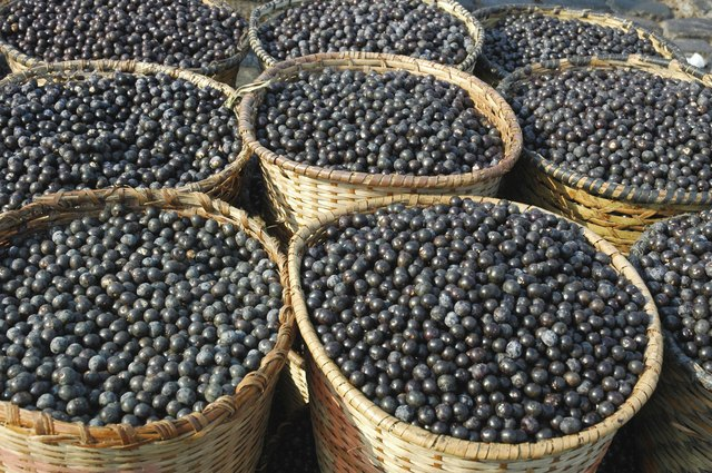 Both the acai and the maqui berry come from South America.