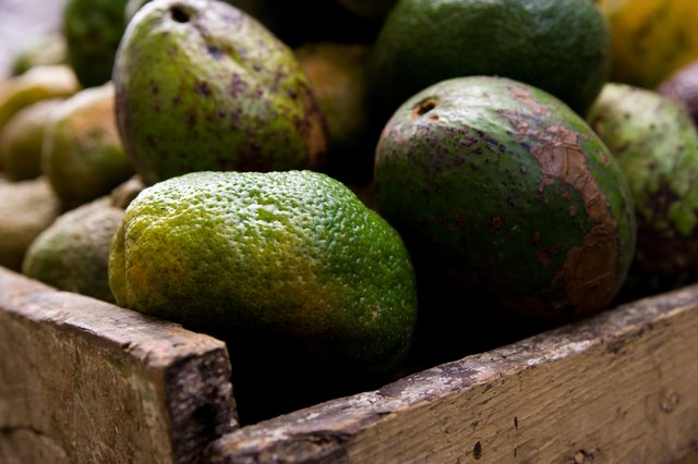 Avacadoes help fight against dry skin.
