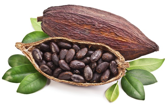 how to prepare cacao beans