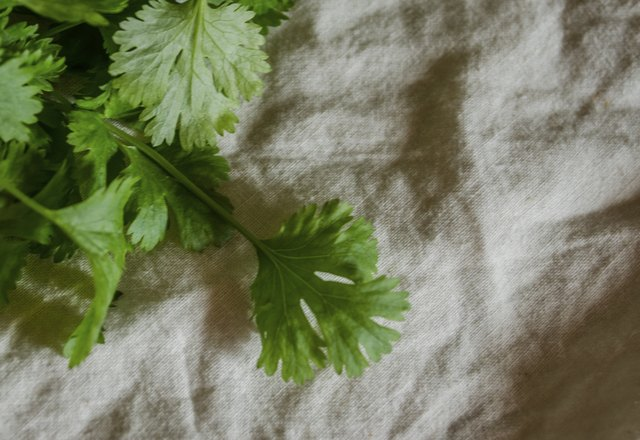 One-quarter cup of cilantro provides 1 percent of the daily requirement for this mineral.