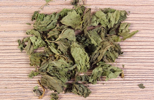 Dried nettle can be boiled or steeped in hot water.