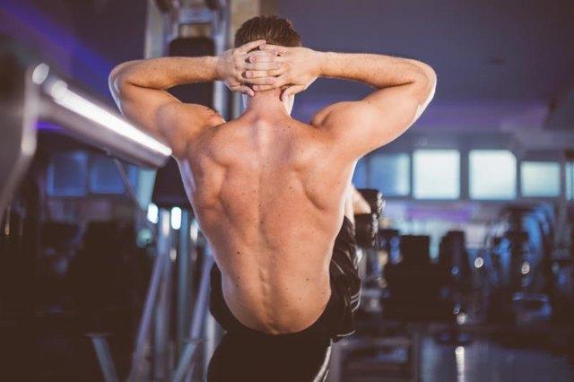 Decline Bench Press Muscles