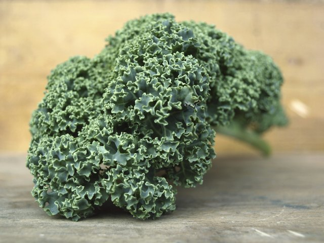 fresh kale on counter