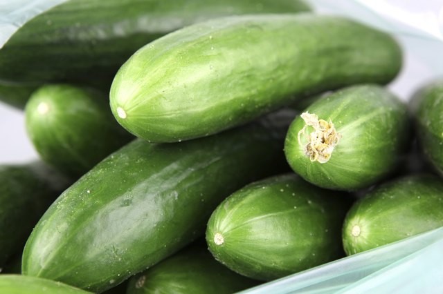 Freshly picked cucumbers.