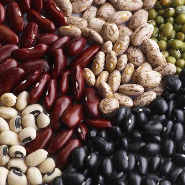 A variety of dried beans are high in zinc and folic acid.