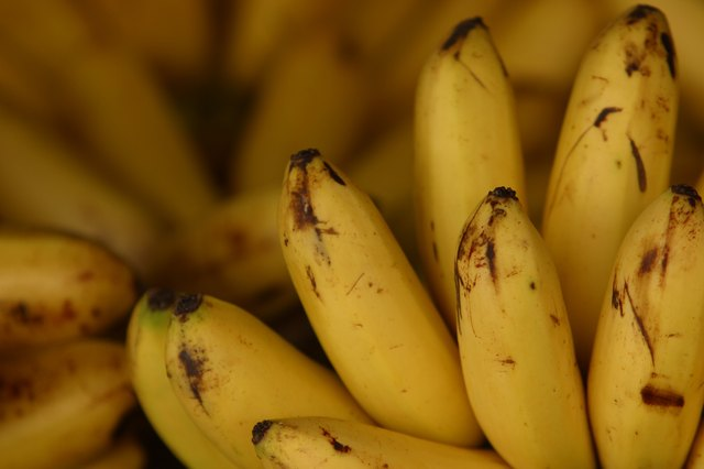 Bananas are another good source of vitamin B-6.