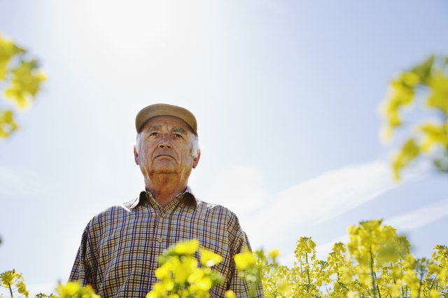 This farmer stands behind his canola plants! (Literally.) If you're concerned about GMOs, choose to buy an organic canola oil.