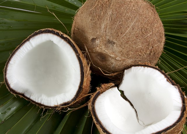 Coconut and coconut meat.