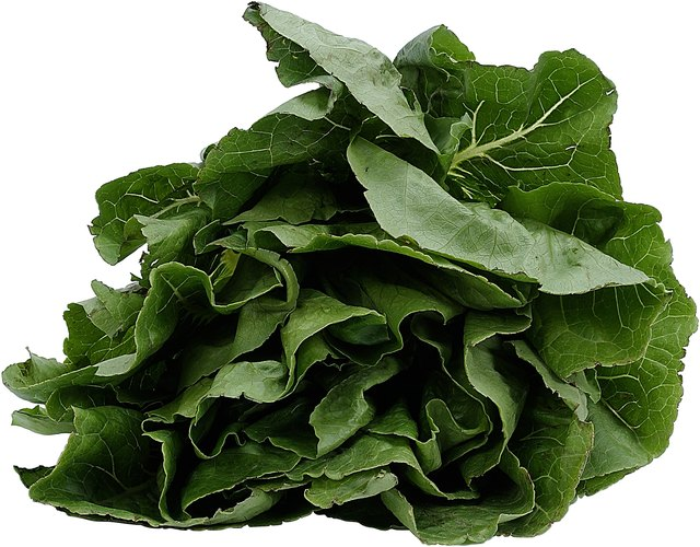 Spinach is a high histamine food.