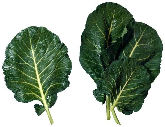 Avoid collard greens.