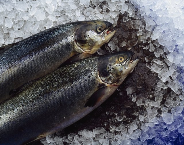 Fish are naturally high in zinc