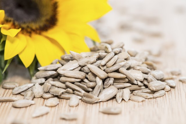 Sunflower and sunflower seeds