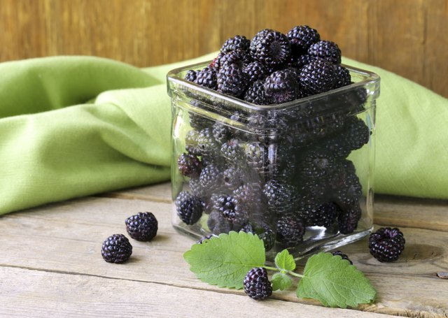 jar of blackberries