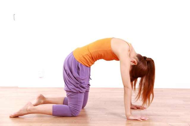 Cat pose improves motility in the digestive organs.
