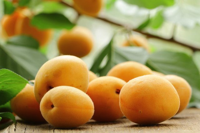 fresh apricots on a table