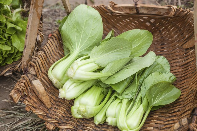 basket of boo choy
