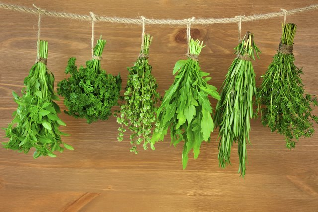 Horehound can help treat respiratory ailments as well.