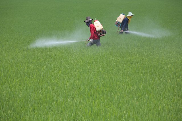 Pesticides can be linked to some cases of breast cancer.