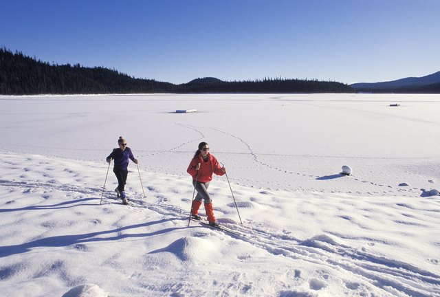 Two cross country skiers next to frozen lake