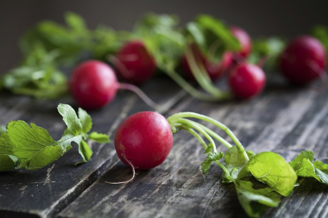 The radish is another good food to consider.
