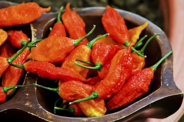 Ghost peppers are so hot that they are rarely used in cooking.