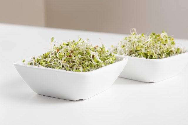 Broccoli sprouts.