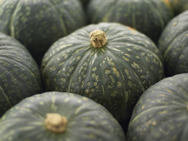 Squash can be eaten in moderation.