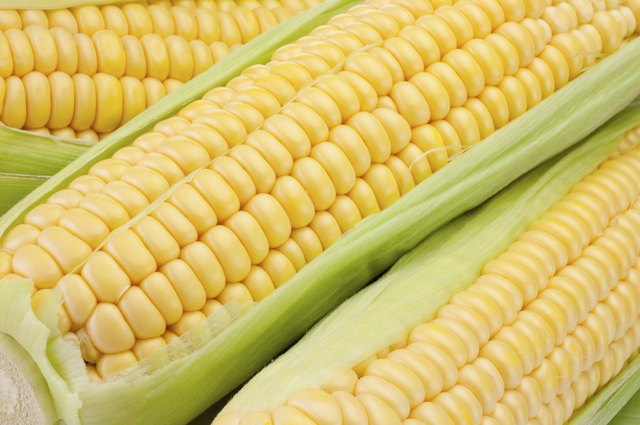 Corn is a starchy vegetable.