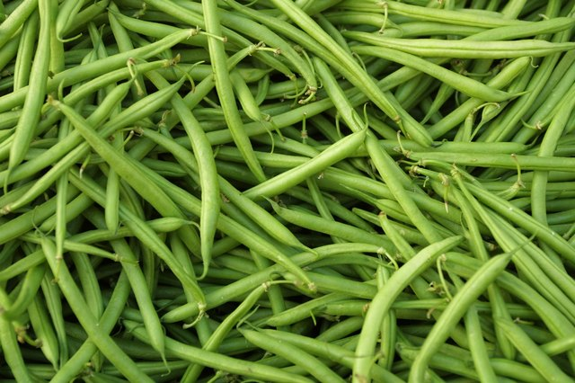Green beans are warm vegetables.