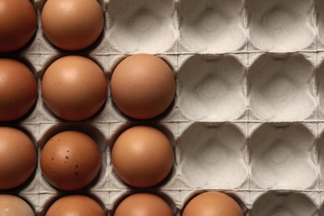 Farm fresh eggs are a healthy source of protein--try to buy these from a farmer or private owner, rather than a store, to save money.
