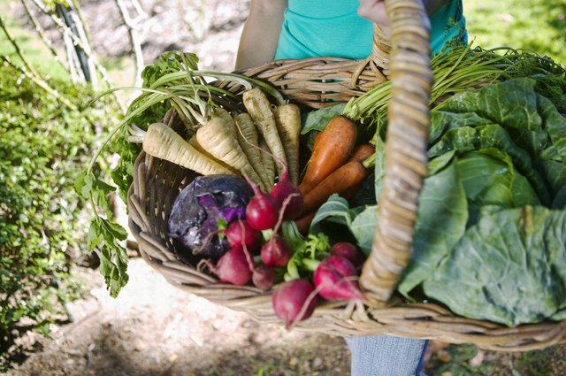 A woman carries a basket of assorted vegetables and leafy greens.