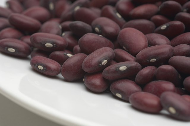 Beans are an extremely low-fat food and a good source of complete protein.