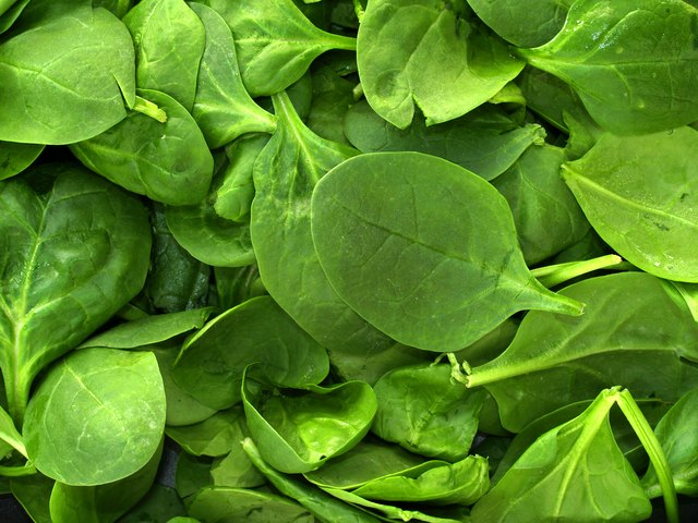 close up of fresh spinach leaves