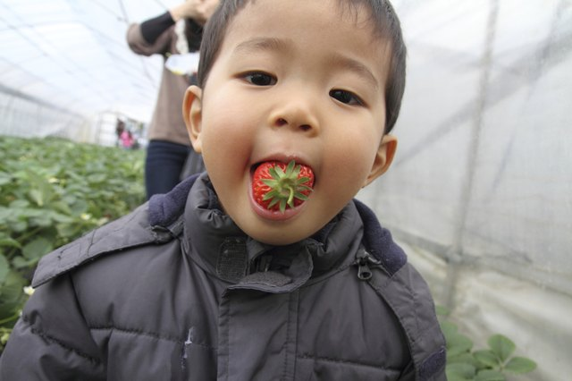 child with strawberry in mouth
