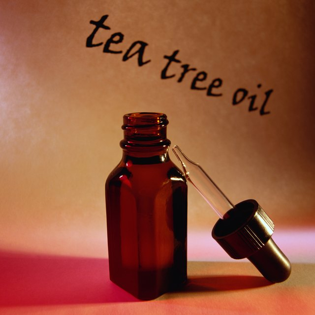 A bottle of tea tree oil