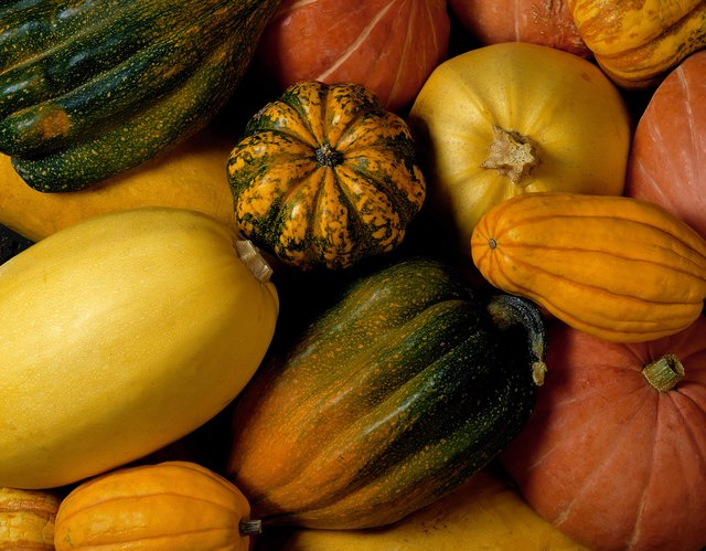 There are many different types of winter squash.