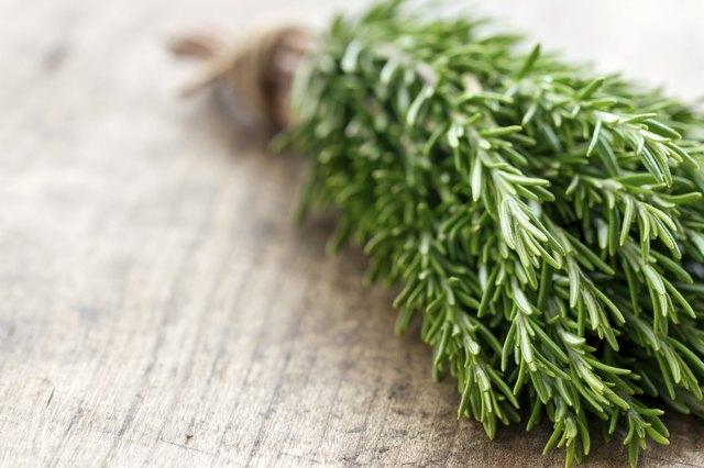 Rosemary can promote hair growth when added to soybean oil.