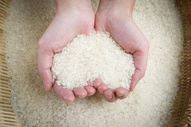 Woman holding rice
