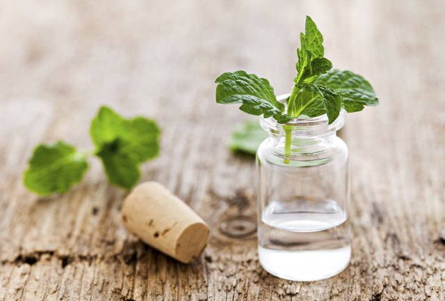A bottle of spearmint oil with fresh spearmint leaves on a piece of wood.