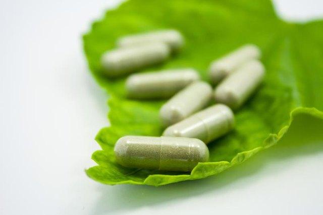 Does green tea fat burner work