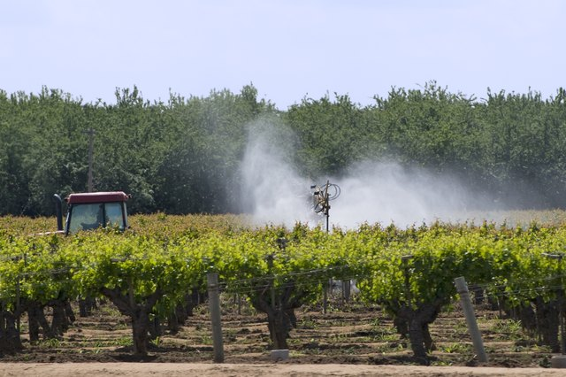 Pesticides may alter the immune system.