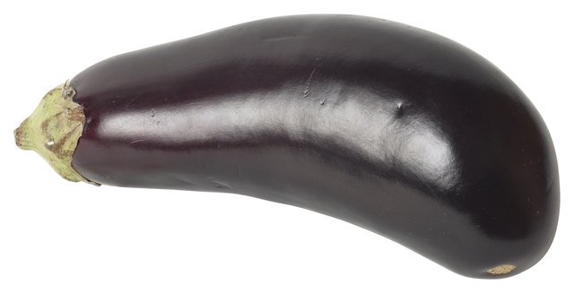 Eggplant are a nightshade vegetable.