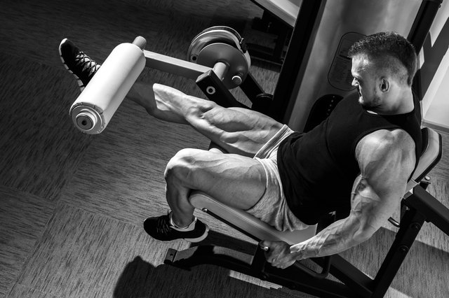 Machine workouts can effectively build quad muscles.