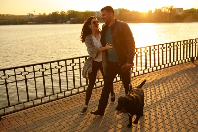 Grab your pup and head out for an evening walk.