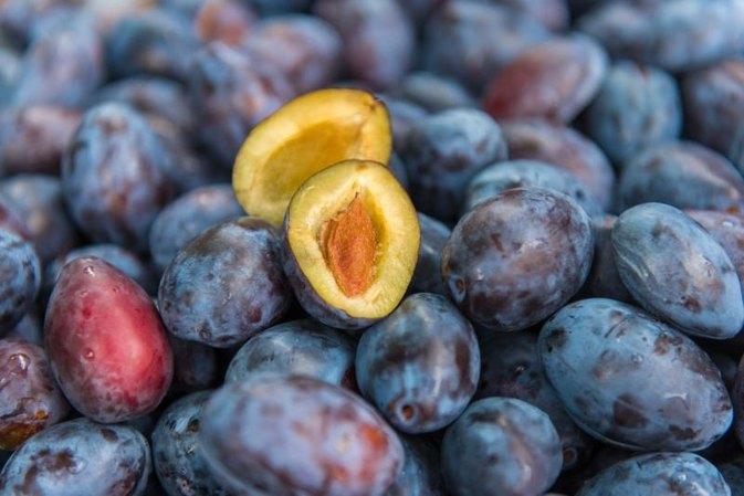 Amankah Diet Buah Plum Untuk Menguruskan Badan? Ini Penjelasan dan Tipsnya !