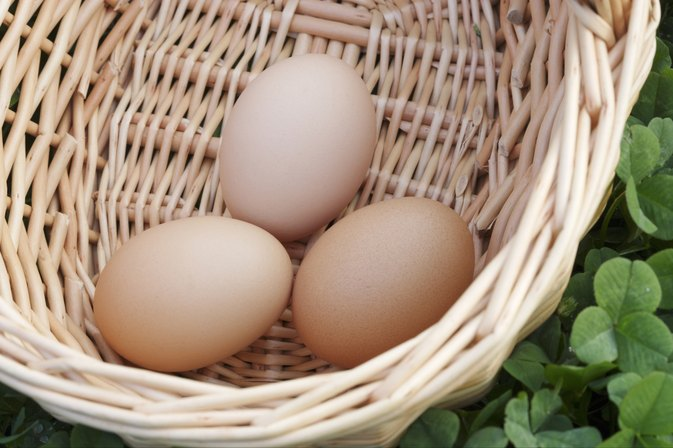 Nutrition Debate: Are Eggs Good For You?