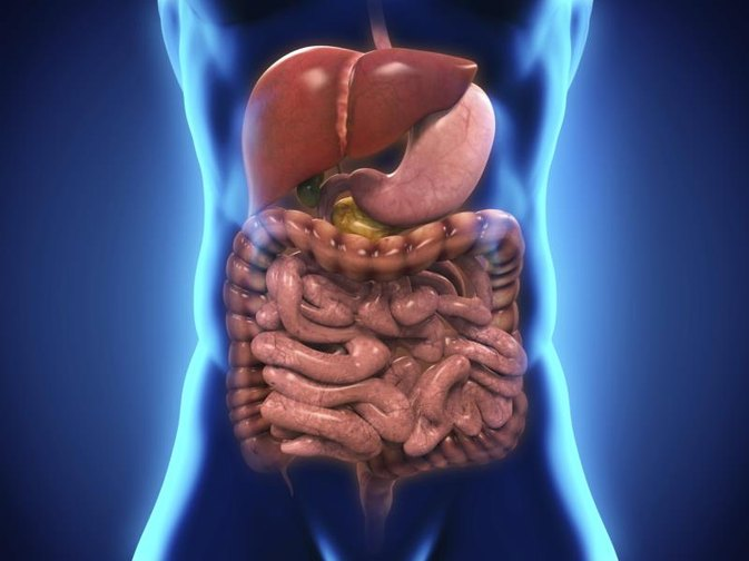 Dangers Of Food And Drink Infections