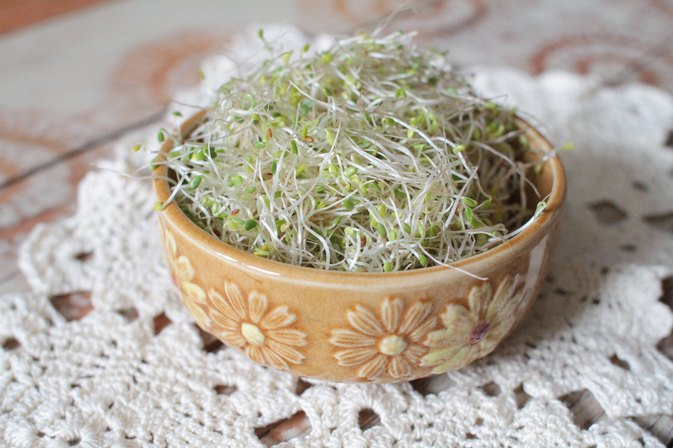 How to Eat Alfalfa Sprouts